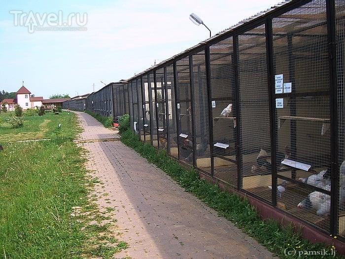 """Парк Птиц """"Воробьи"""" (Калужское шоссе, Подмосковье) / Россия"""