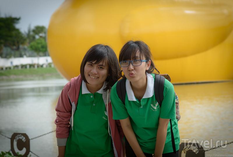 Гигантский желтый утенок / Вьетнам