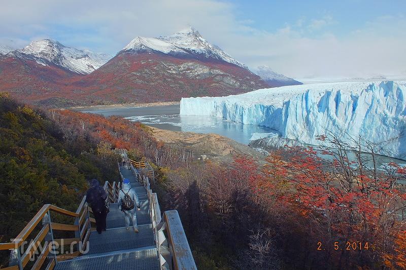 Экскурсия к леднику Перито-Морено. Смотровая площадка у ледника / Аргентина