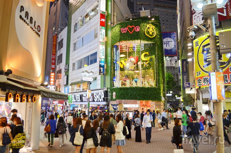 Красота по-японски / Япония