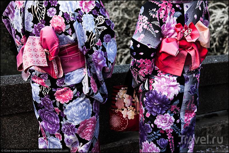 Сакура - весенняя прохлада... / Фото из Японии