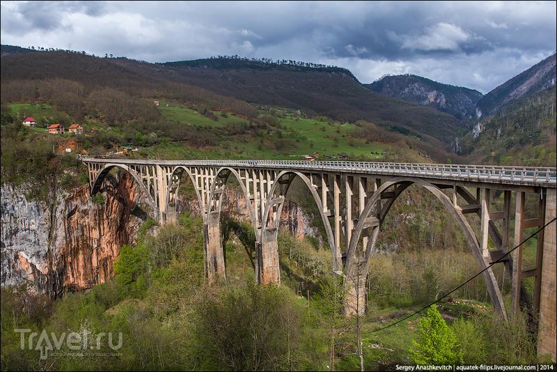 True Черногория. Северный маршрут / Фото из Черногории