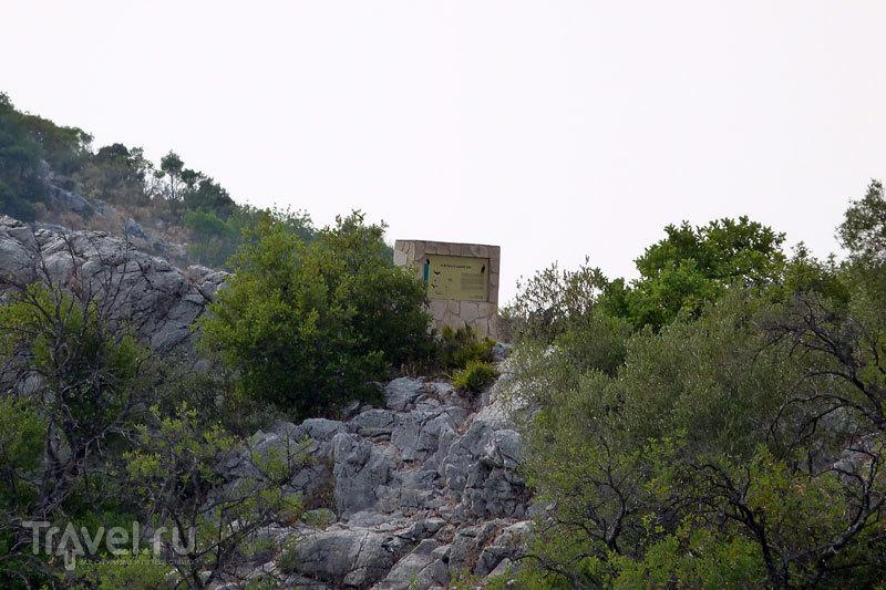 Андалусия. Заповедник Сьерра-де-Грасалема. В гости к грифам / Испания