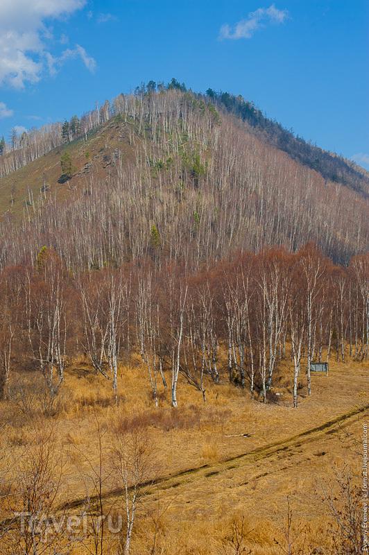 Кругобайкальский экспресс / Фото из России