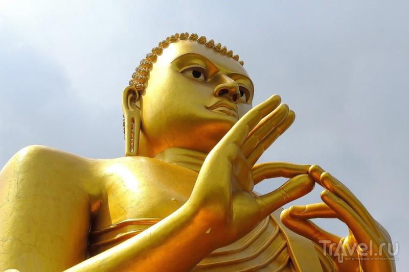 Пейзажи Шри-Ланки / Фото со Шри-Ланки