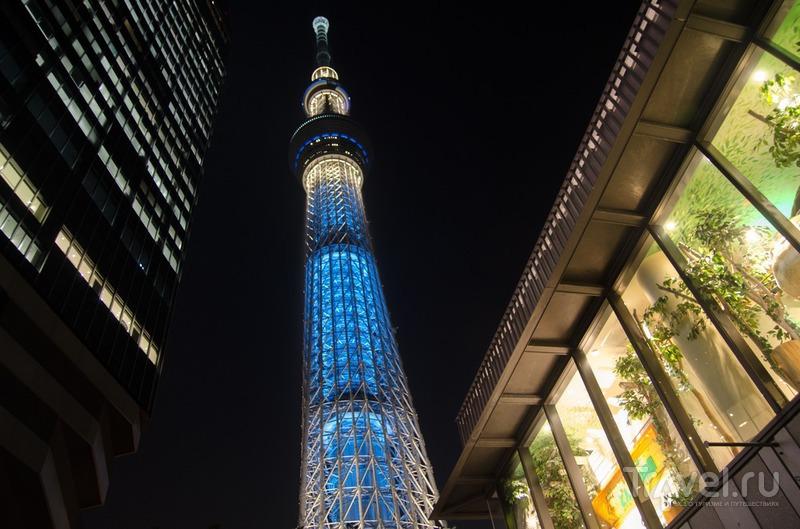 Небесное дерево, или Токио с высоты 650 метров / Япония
