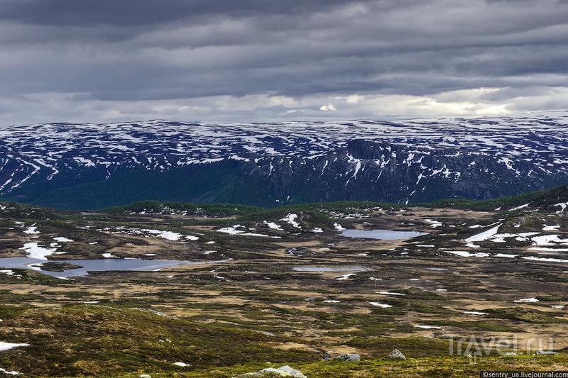 Норвегия. Из Осло к фьордам / Фото из Норвегии