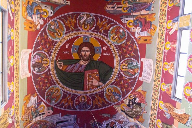 "Айя-Напа: экскурсия в ""Святой лес"" / Кипр"