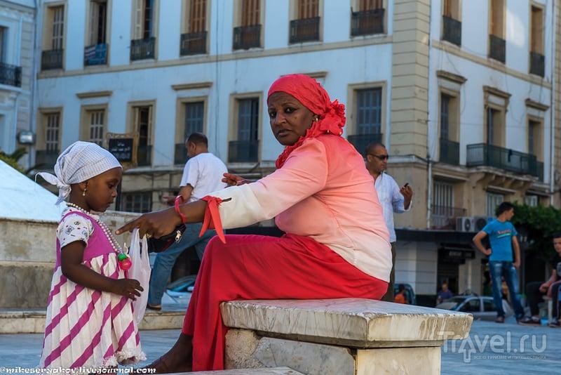 Алжир - страна и столица / Фото из Алжира