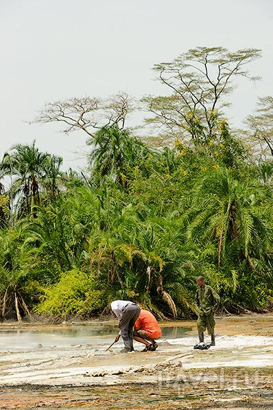 Уганда: Semuliki national park / Фото из Уганды