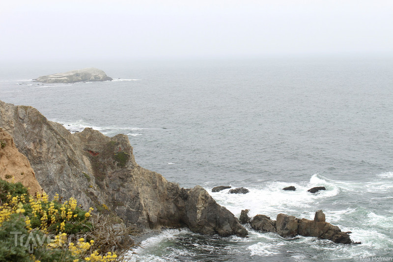 Point Reyes. Вдоль и поперек / Фото из США