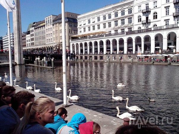 Путешествие в Гамбург из Голландии на поезде / Германия