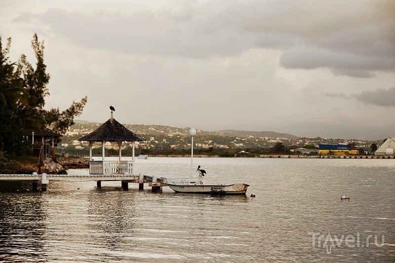 Ямайка. Вокруг острова за 12 дней / Фото с Ямайки