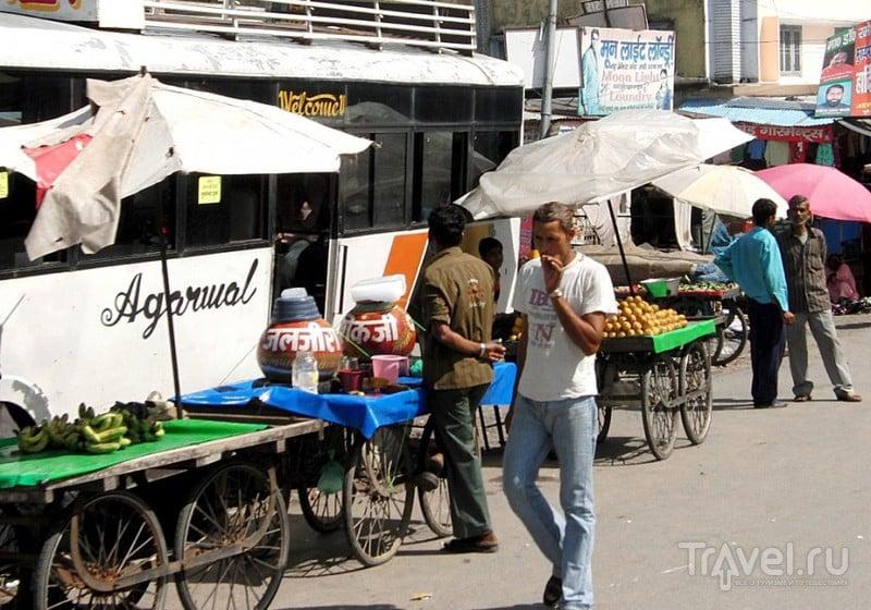 Индия. По следам Джима Корбетта / Индия
