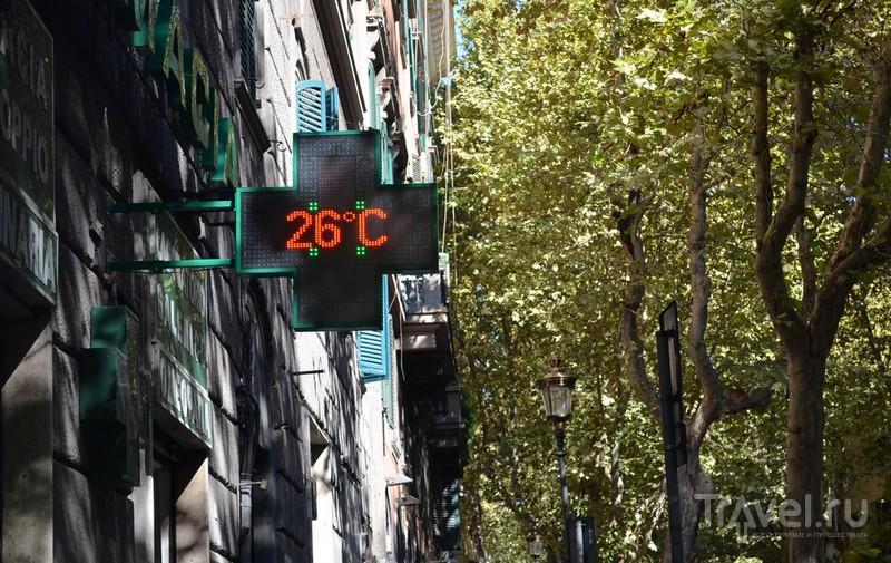 +36 в Риме - это не страшно... / Фото из Италии