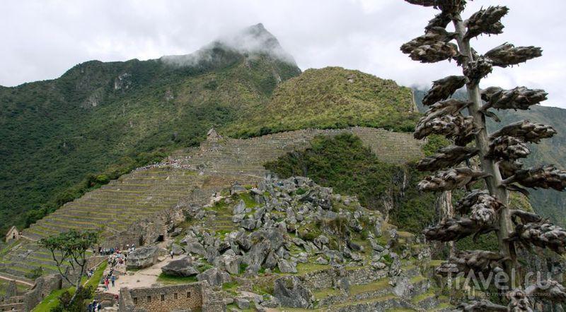 Перу - иная планета / Фото из Перу