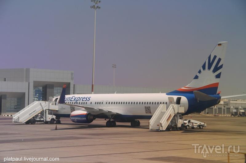 Египет 2014. Впечатления от отпуска / Египет
