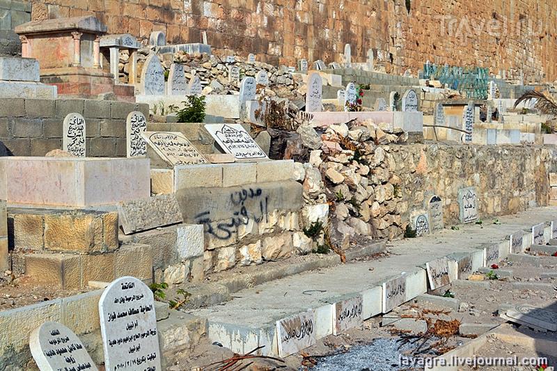 Иерусалимскими дорогами в поисках чудес / Фото из Израиля