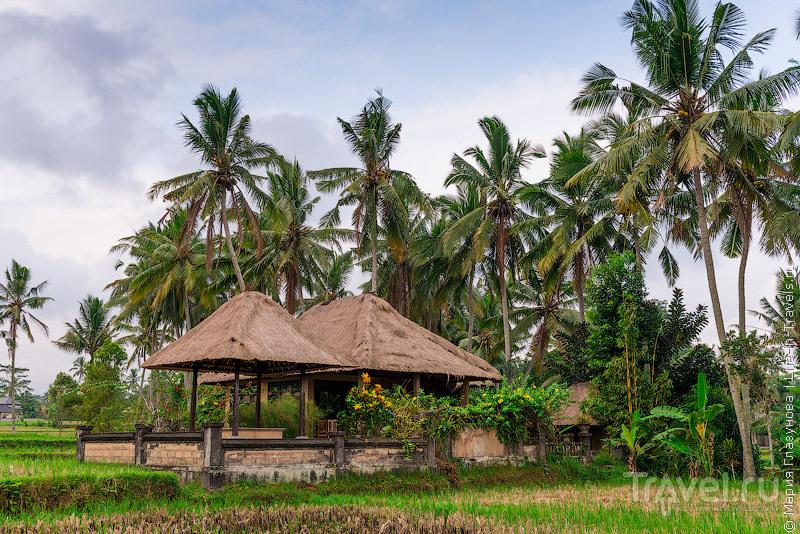 """По следам фильма """"Ешь, молись, люби"""" - как в действительности выглядят популярные места на Бали / Индонезия"""