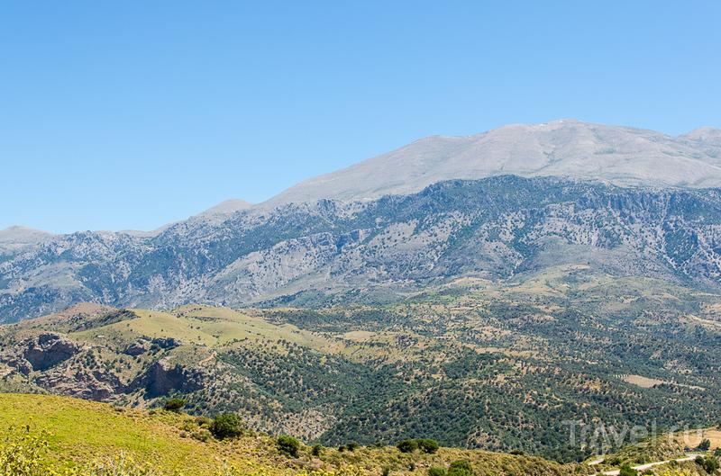 Прохладный горный воздух, извилистые дороги и много цветов / Греция
