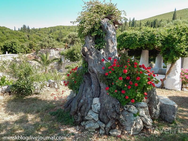 Закинф. Красоты / Фото из Греции