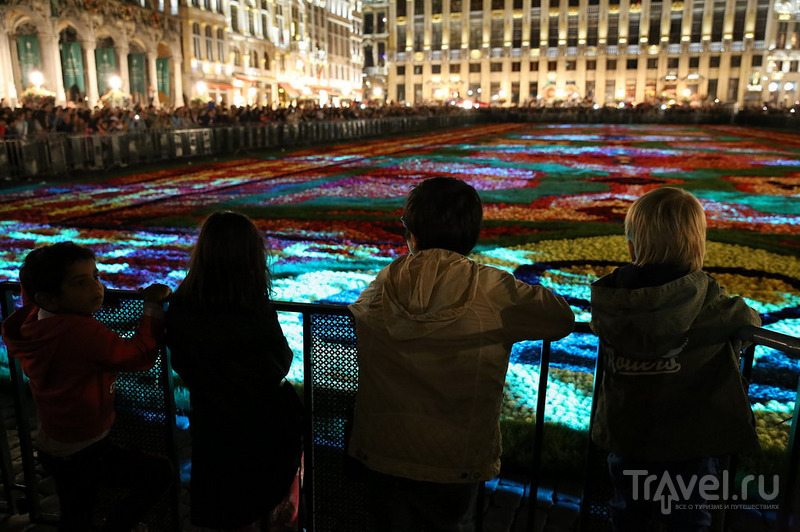 Цветочный ковер в Брюсселе / Бельгия