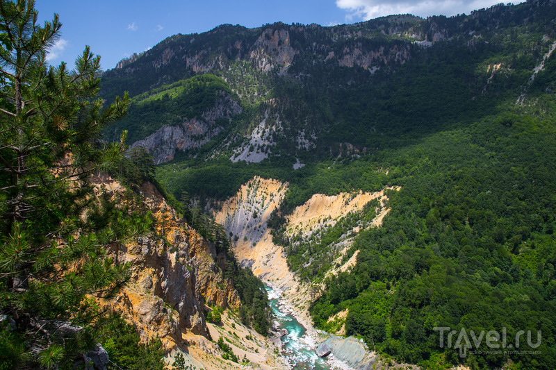 Черногория, автобусная экскурсия по каньонам / Фото из Черногории