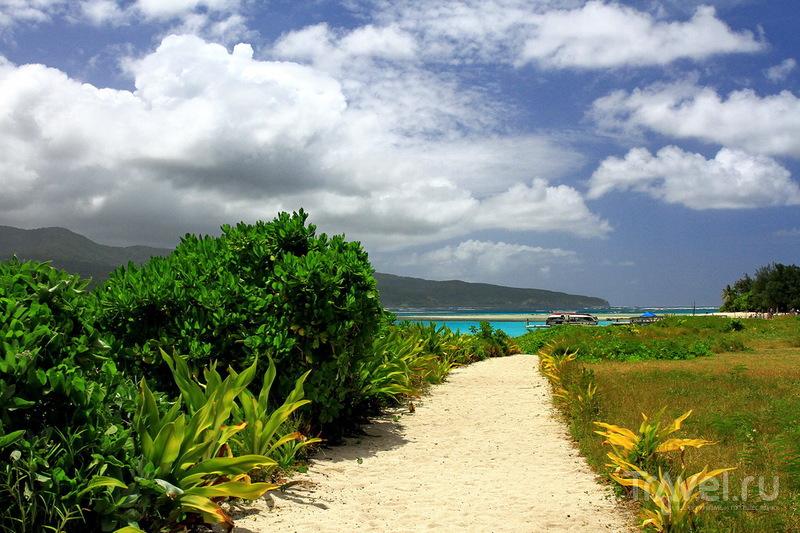 Жемчужина Вануату - Mystery Island! / Фото из Вануату