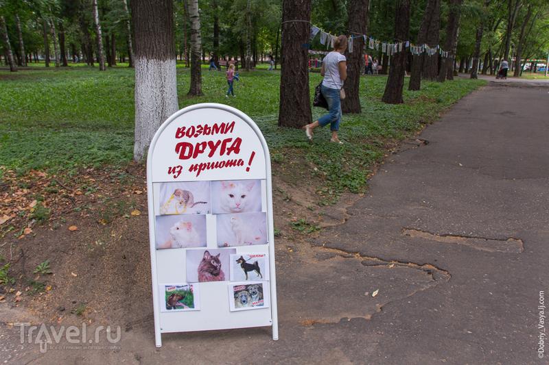 Городской Праздник урожая / Россия