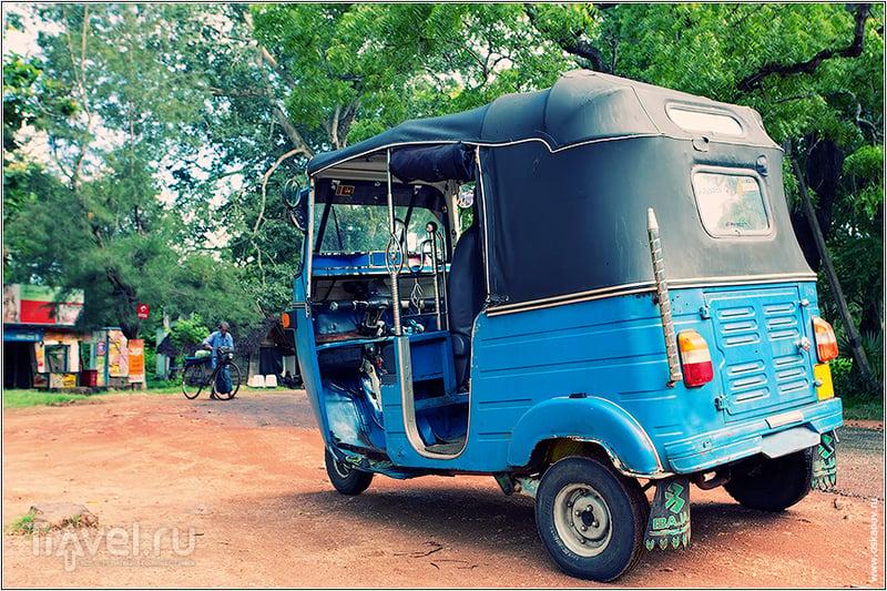 Священный Город Священной Земли / Фото со Шри-Ланки