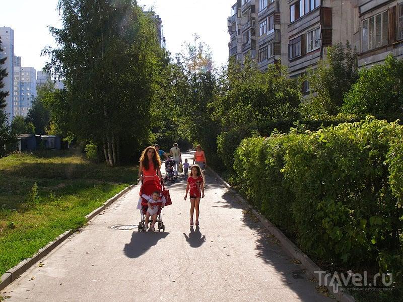 Подмосковье. Метель августа / Россия