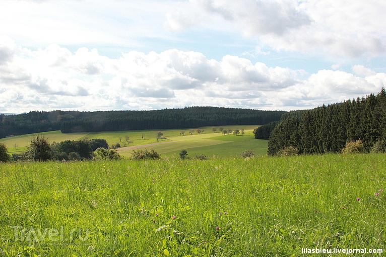 """Прогулка в """"Черном лесу"""" / Германия"""