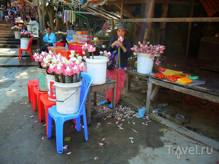 Ангкор, еще Ангкор (и не только) / Камбоджа