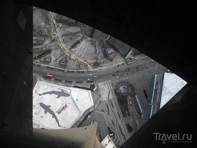 CN Tower, Toronto. Выпить виски на одной из самых высоких телебашен мира / Фото из Канады