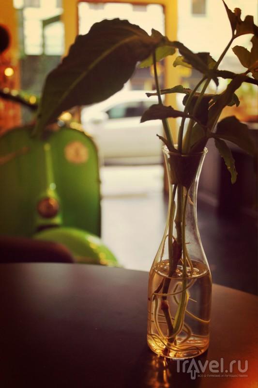Мимишные кафешки Пхукет Тауна - Зеленый бар / Таиланд