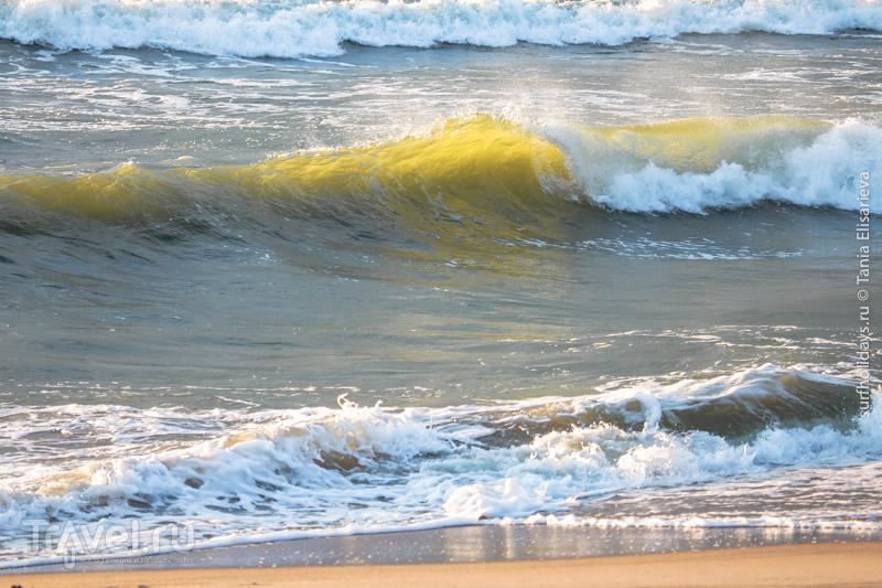 Серфинг на Куршской косе