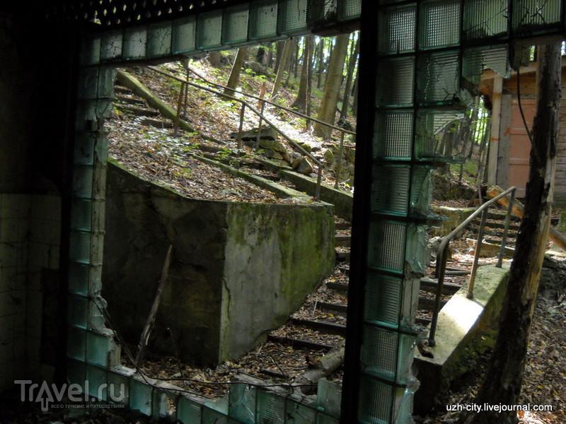 Лагерь-призрак у руин Невицкого замка. Год спустя / Украина