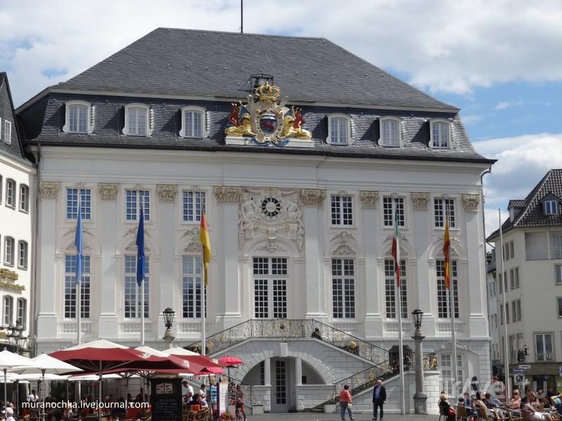 Бонн: как выглядит бывшая столица ФРГ в наши дни / Германия