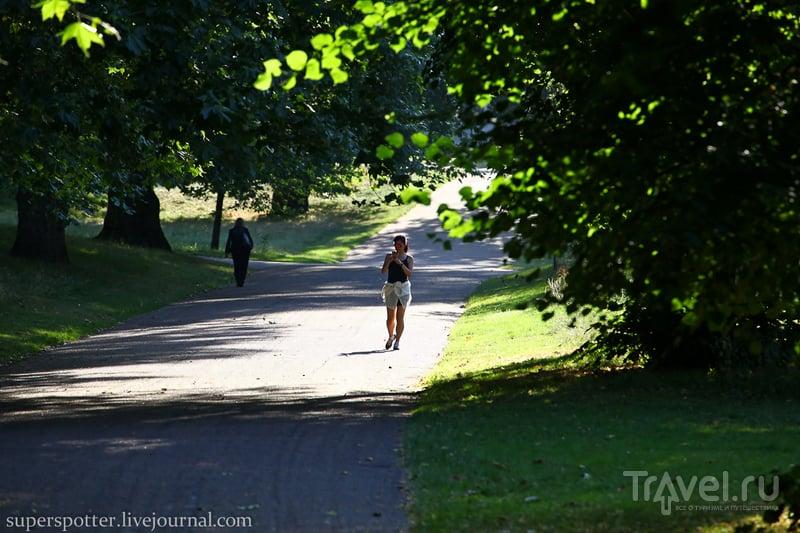 Лондон. Green Park / Великобритания