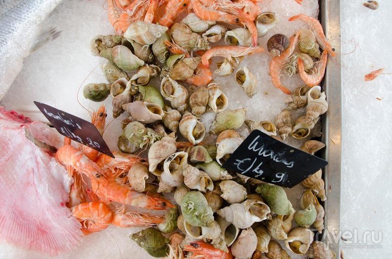 Фермерский рынок в Брюгге / Бельгия