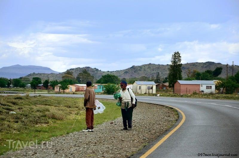 Слоны, зебры и 800 км по ЮАР / Фото из ЮАР