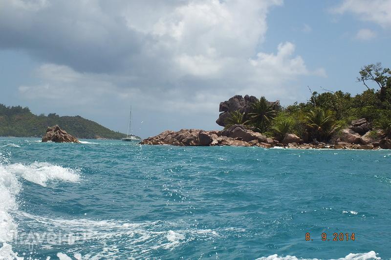 Сейшелы. Остров Кузин / Сейшелы