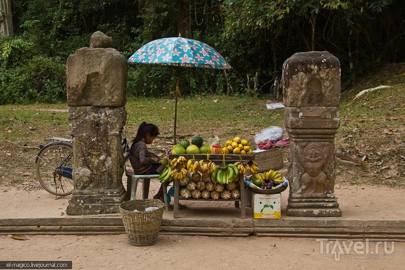 Ангкор. Как мы наматывали Большой Круг или места, где почти нет туристов / Фото из Камбоджи