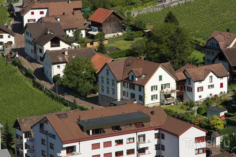 Карликовый Лихтенштейн / Фото из Лихтенштейна