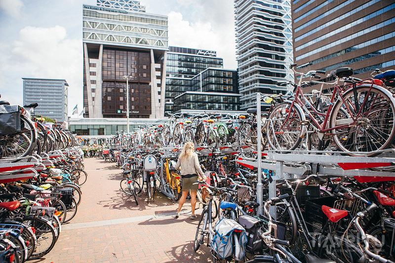 Гаага / Нидерланды