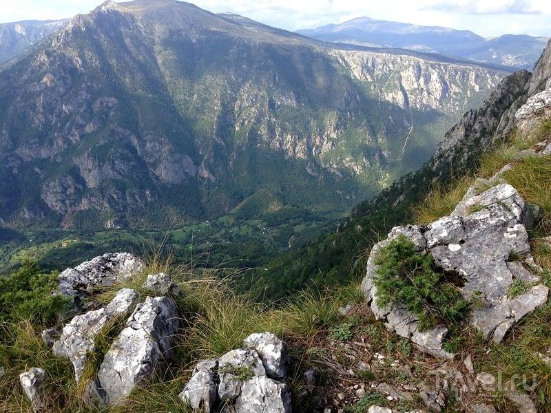 Панорама Чуревац в Черногории - самая высокая точка каньона реки Тара / Фото из Черногории