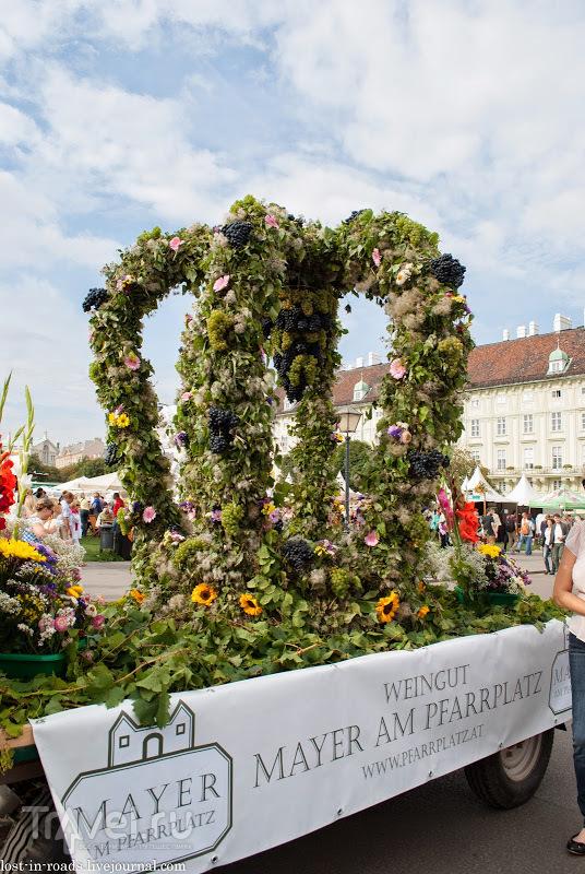 Праздник урожая в Вене / Австрия