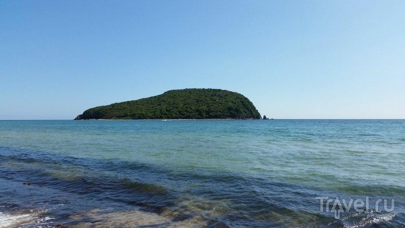 Сказочный остров Петрова