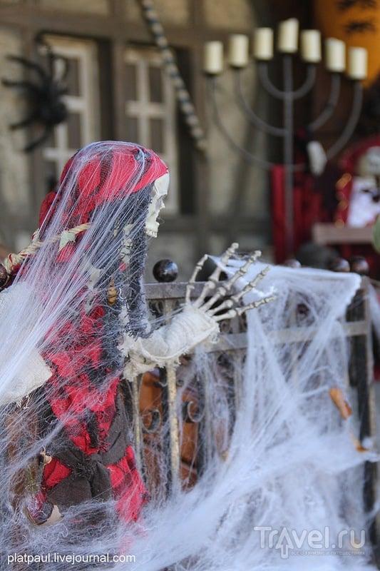 Замок Зацвай. Неоднозначный праздник Хэллоуин / Фото из Германии