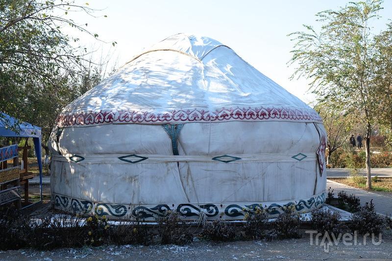 Верблюд из Туркестана... / Фото из Казахстана